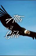 Obras Abiertas Obras Abiertas: Canción a la Bandera (Aurora)